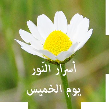 Salati My Prayer مسبحة الوردية